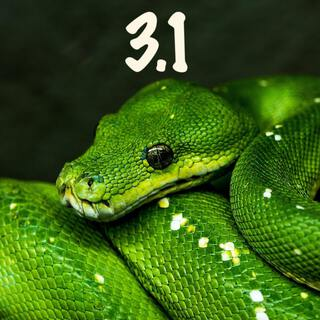 green python two 31